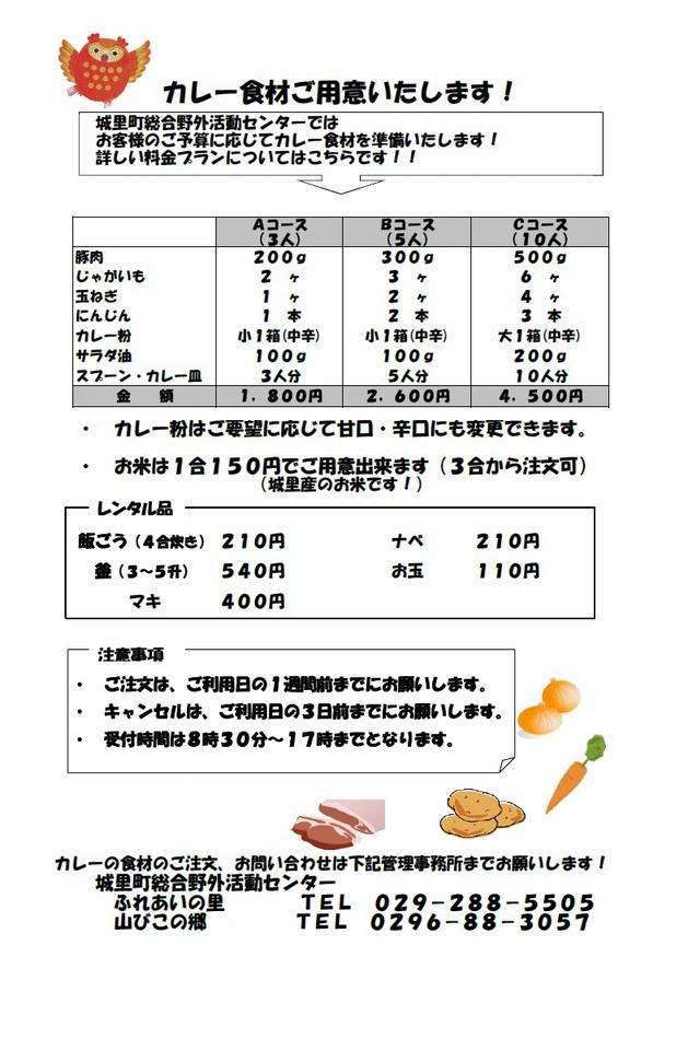 カレー(29年度).jpg