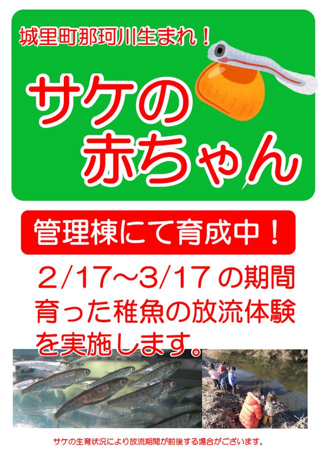 稚魚ポップ.png