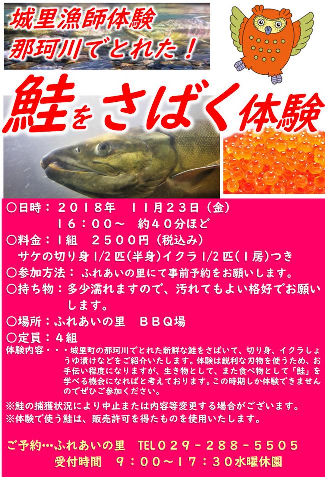鮭をさばく体験.png