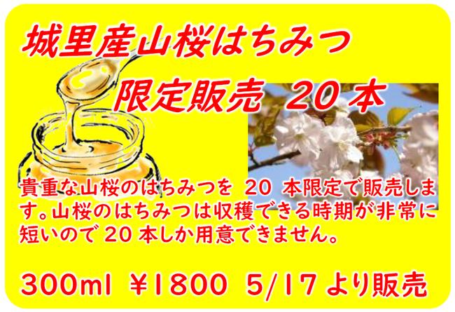 H31やまざくらハチミツ販売.png