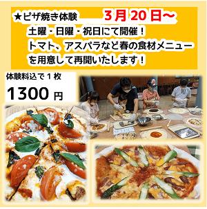 yagaisaikai.pizza.png